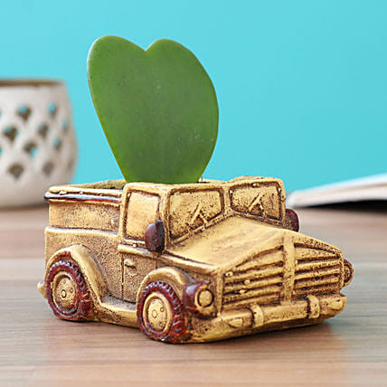 plant in jeep pot online