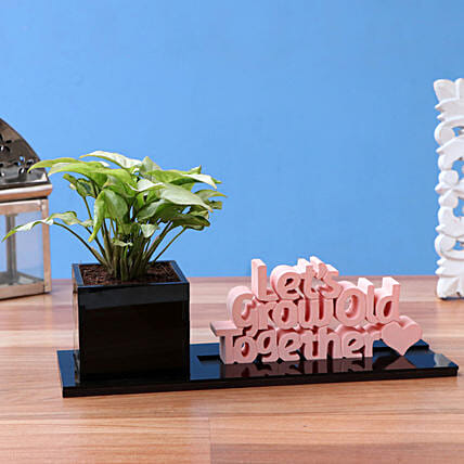 Syngonium Plant In Let's Grow Old Together Table Top Planter