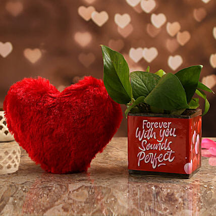 Money Plant In Forever With You Vase & Red Heart:Soft toys to Hyderabad