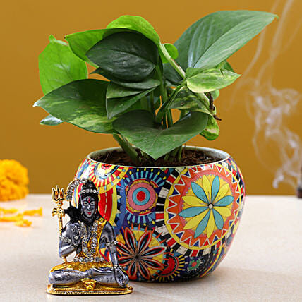 Lord Shiva Idol Money Plant:Shivratri Gifts