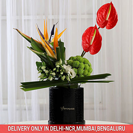 Valentine's Flowers Online:Send Anthuriums