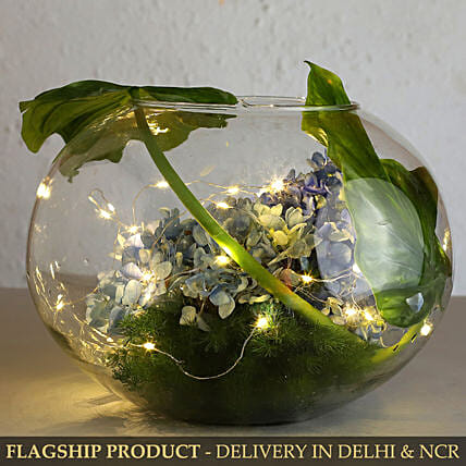Blue Hydrangea In Fish Bowl With Fairy Light