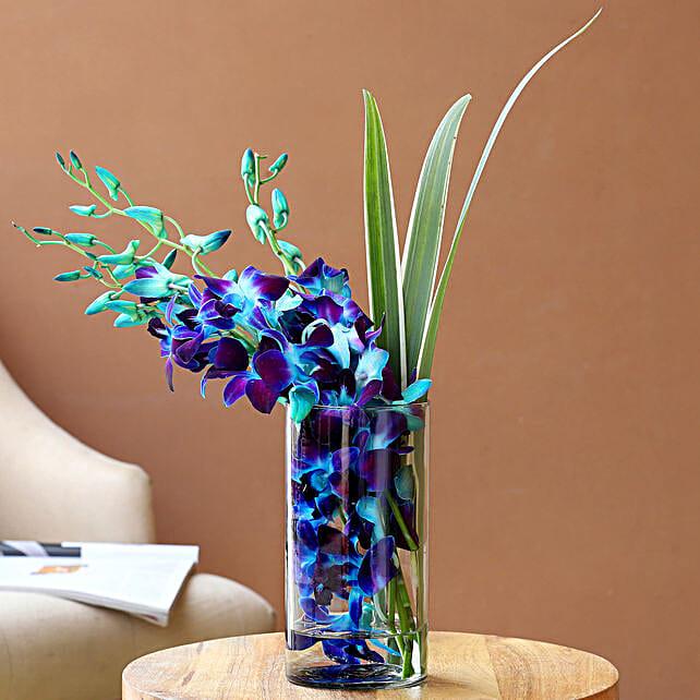Lovely Orchids Dandella In Cylindrical Vase