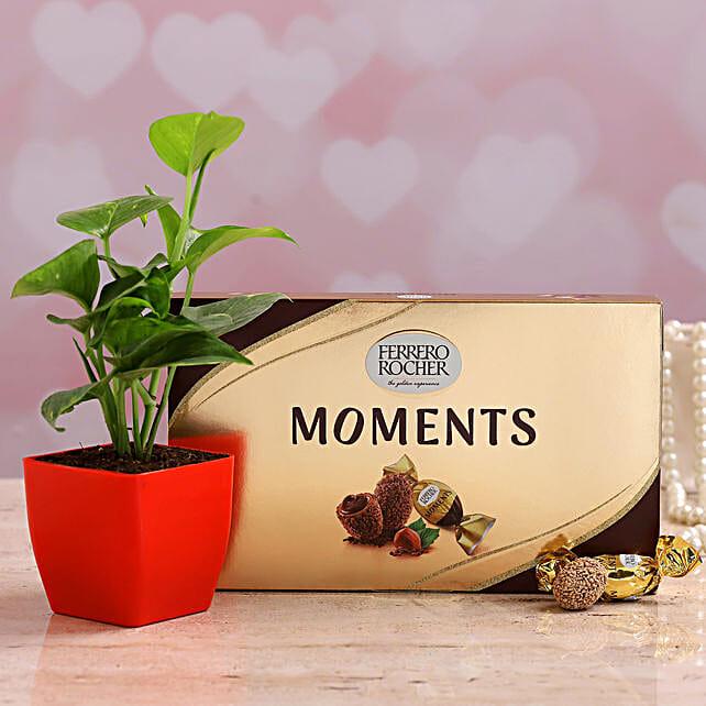 Money Plant With Ferrero Rocher For Mom
