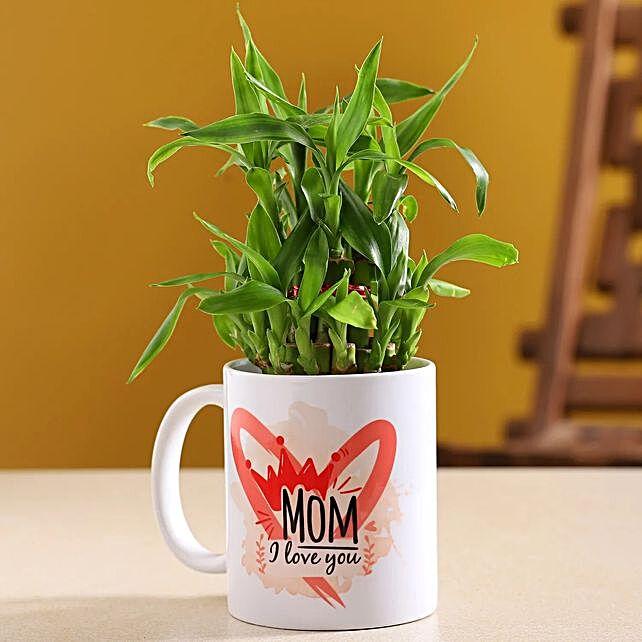 Two Layer Bamboo Plant In I Love U Mug