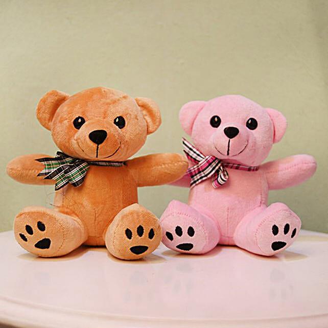 Cute & Cuddly Brown & Pink Poppy Teddy Bear Combo