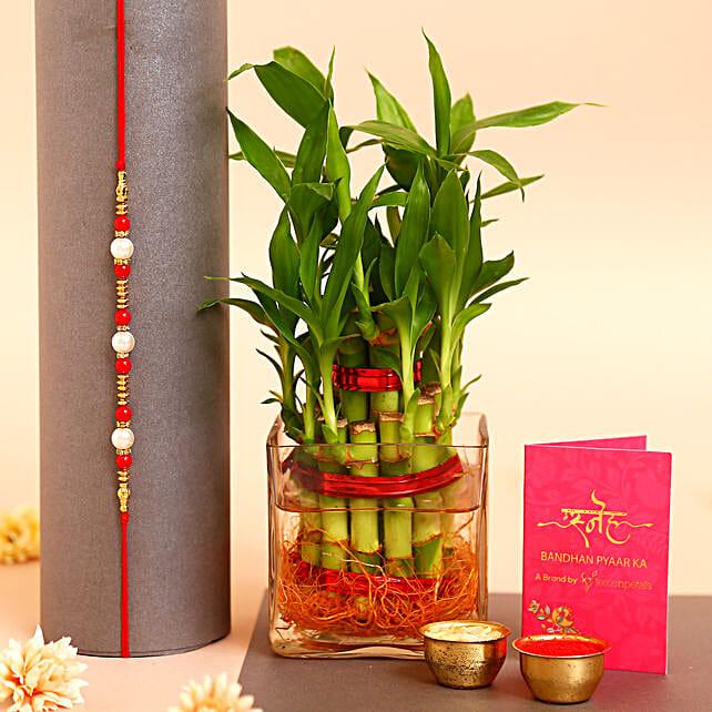 Pearl Rakhi N 2 Layer Bamboo Plant Vase