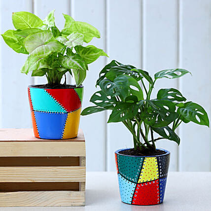 Set Of 2 Green Plants In Patch Stitch Multicoloured Pots