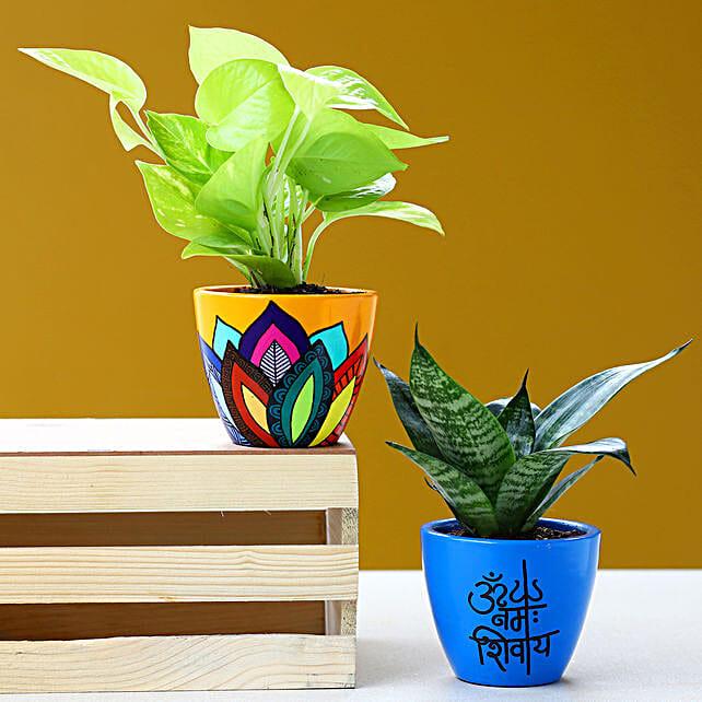 Set Of 2 Refreshing Plants In Handpainted Ceramic Pots