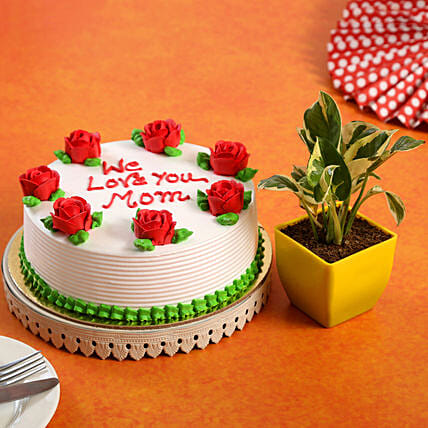 We Love You Mom Cake White Pothos Plant Combo:Gift Combos For Mothers Day
