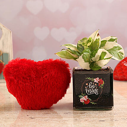 White Pothos Plant In Be Mine Vase & Red Heart:Soft toys to Kanpur