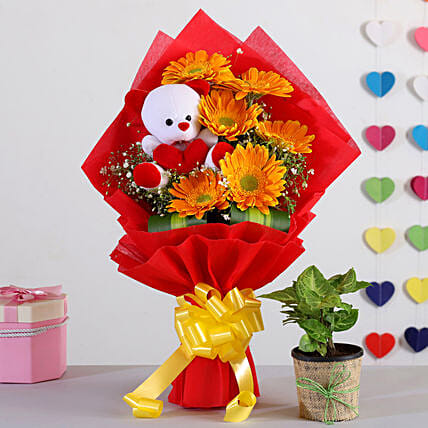 Yellow Gerberas Bouquet With Syngonium Plant Teddy