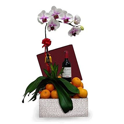 Phalaenopsis Orchid With Tangerinens Wine:Plants  in Malaysia
