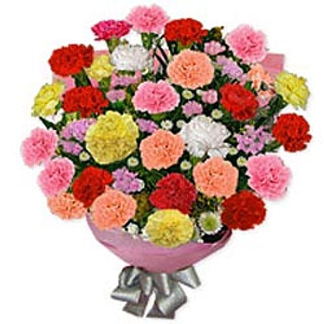 Carnation Carnival mor