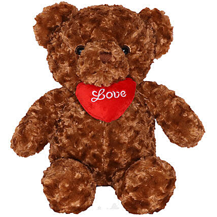 Cute Brown Teddy Bear with Heart Pillow 17
