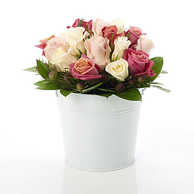 Pink Rose Nestle