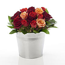 New zealand gifts online delivery send gifts online nz ferns n a bucket of roses negle Image collections