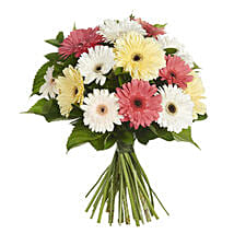 New zealand gifts online delivery send gifts online nz ferns n daisy gerbera bouque negle Image collections