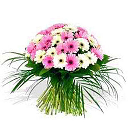 Gorgeous Gerberas:New Arrival Gifts Philippines