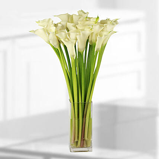 calla lilies vase online