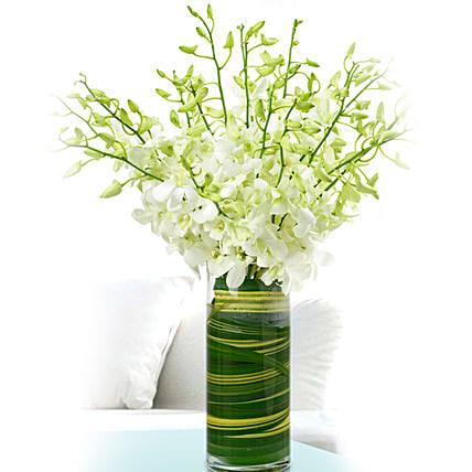 dendrobium orchids vase online:Orchids Delivery in Qatar