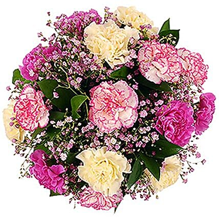 Colorful Carnation Bunch