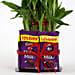 2 Layer Lucky Bamboo With Dairy Milk Chocolates