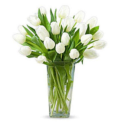 20 White Tulips:Womens Day Gifts to Singapore