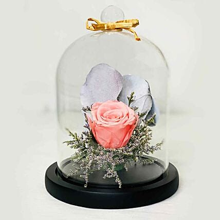 Forever Rose In Glass Dome- Pink:Send Forever Roses to Singapore