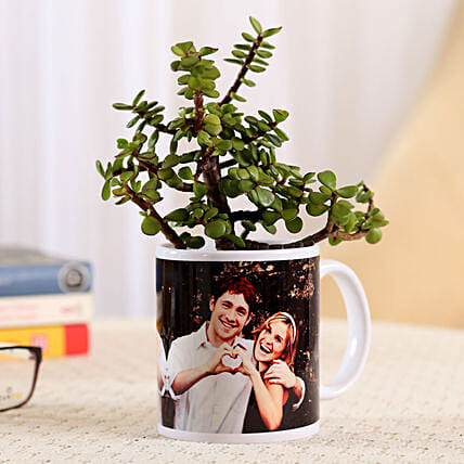 Jade Plant In White Personalised Mug