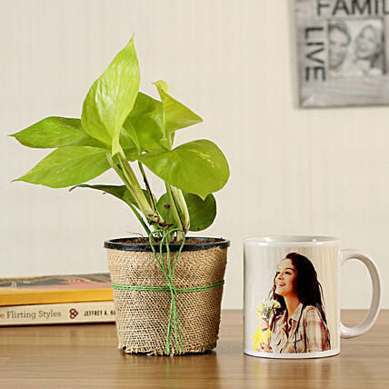 Money Plant Personalised White Mug