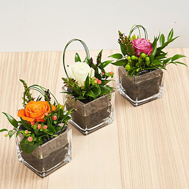 Set Of 3 Rose Vase Arrangements