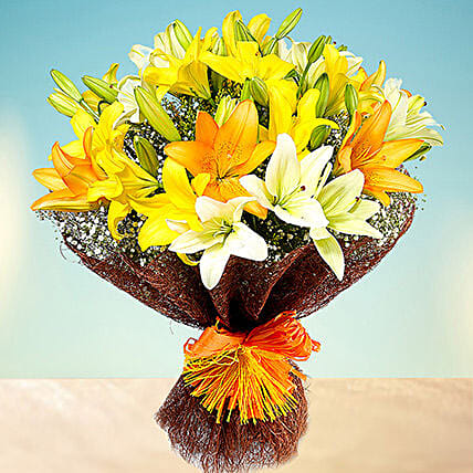 Sunny Asiatic Lilies