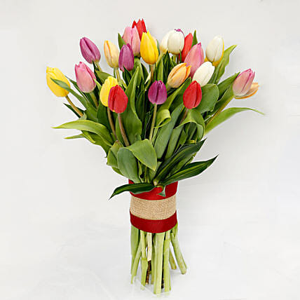25 Vibrant Tulips Bunch:Send Flowers to Singapore