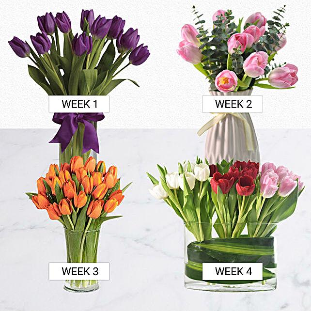Charm Of Tulips
