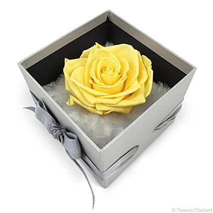 Forever Yellow Rose In Dome Box