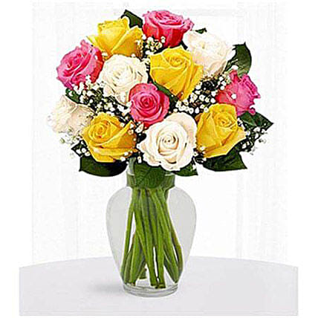 12 Multi Color Roses