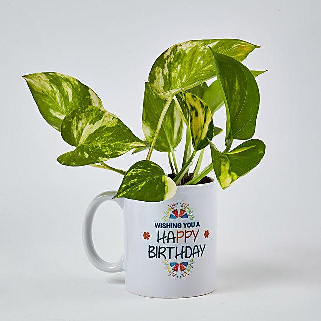 Money Plant In Happy Birthday Mug