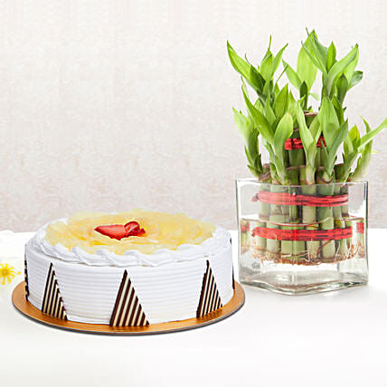 Pineapple Cake and Lucky Bamboo Combo:Indoor Plants in UAE