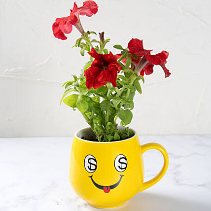 Red Petunia in Smiley Cup