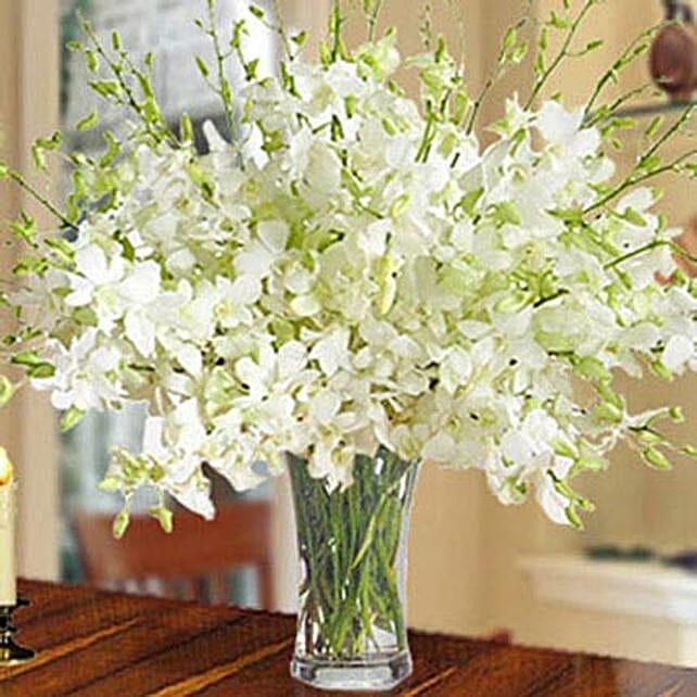40 White Orchid Arrangement