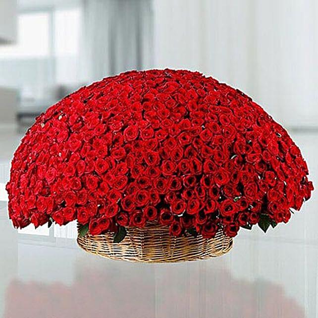 800 Red Roses Basket