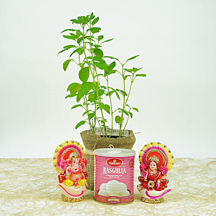 1 tulsi plant wrapped in a jute mat with laxmi and ganesha idol, 1 kg haldiram gulab jamun, 1 brass diya