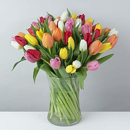 The Colorful Tulip Bunch