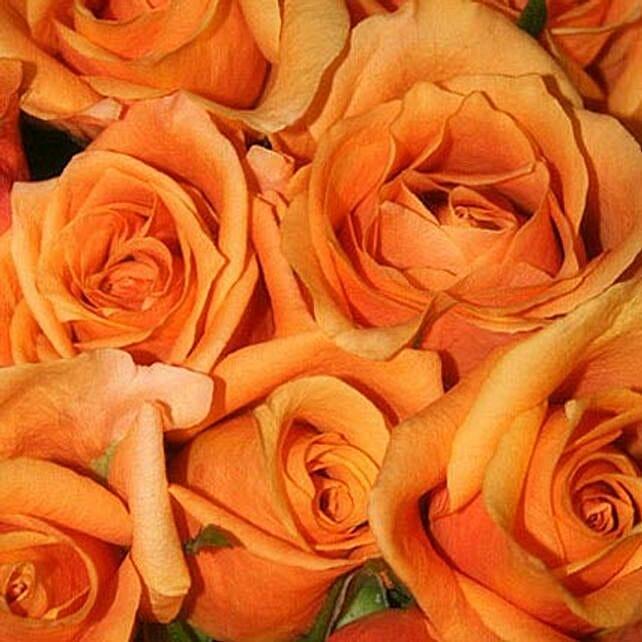 50 Long Stem Orange Roses