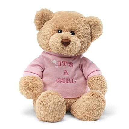 Baby Girl Teddy 12 Inches
