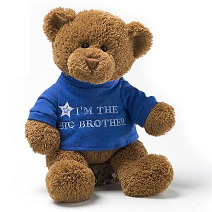 Big Brother Teddy 12 Inches