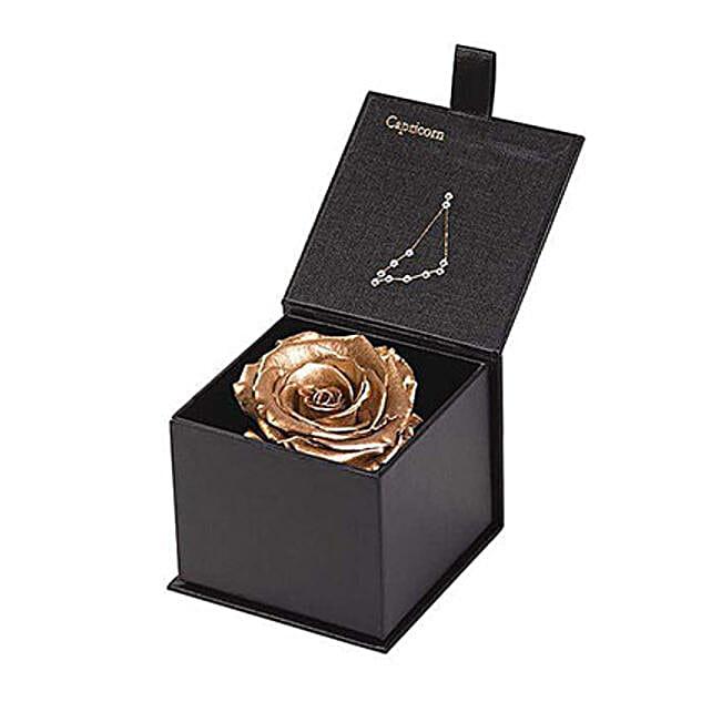 Eternal Rose Capricorn Box