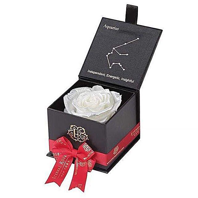 Eternal Rose Gift Box For Aquarius