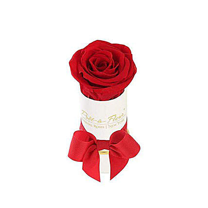 Liberty Scarlet Eternal Rose Gift Box:Send Forever Roses to USA